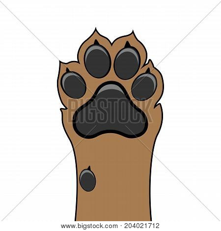 Paw dog up pet vector isolated illustration