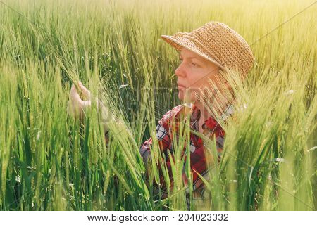 Female farmer examining wheat ears in field woman working on cereal crop plantation