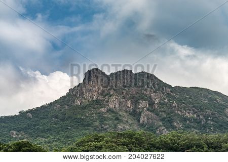 Lion Rock,mountain It Seems Lion Is Located In Hong Kong, One Of The Symbol Of Hong Kong Spirit
