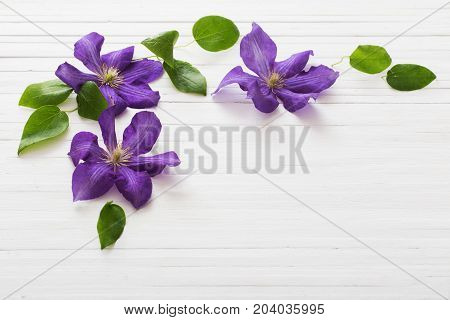 the wooden whitev background with purple clematis