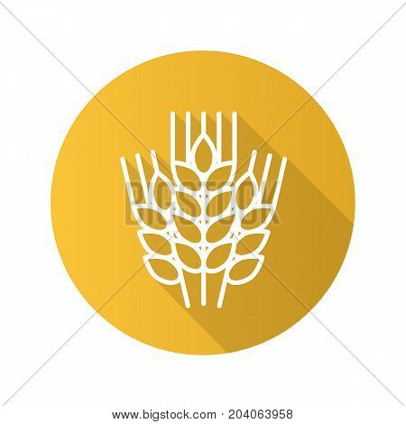 Wheat ears flat linear long shadow icon. Spikes of rye. Vector outline symbol