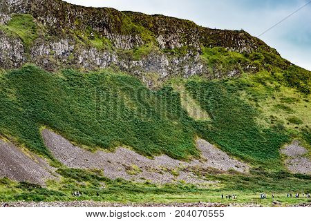 View of The Giant's Causeway in County Antrim, Northern Ireland