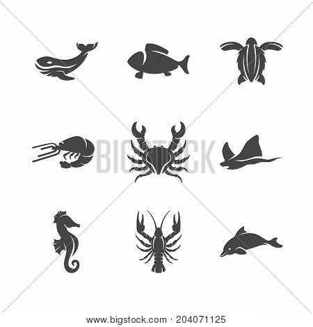 Modern icons set silhouettes of sea animals. Symbol collection of turtle crab lobster dolphin isolated on white background. Modern flat pictogram pack. Sea animals vector logo concept for web graphics - stock vector