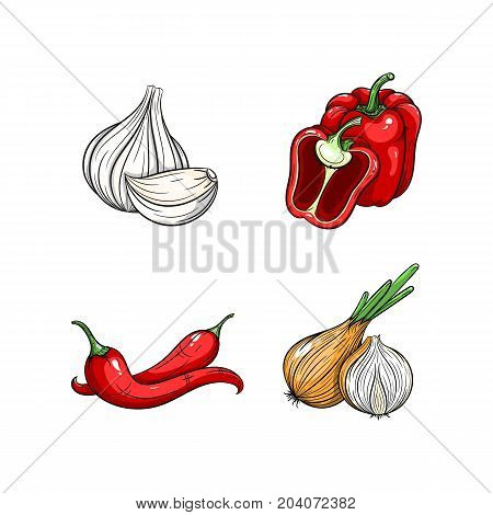 Collection set of hand drawn vegetables isolated on white background. Vector illustration of bell pepper garlic chilli pepper and onion in vintage sketch style - stock vector