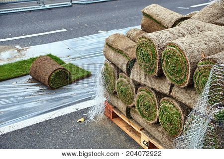 Sod rolls ready to be laid on the urban road