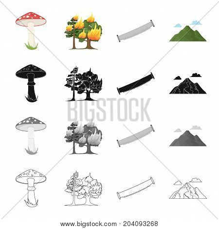 Amanita, forest fire, hand saw on wood, mountain with clouds. Forest set collection icons in cartoon black monochrome outline style vector symbol stock illustration .
