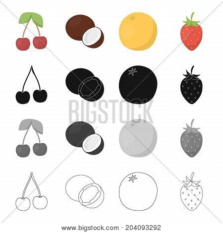 cherry, coconut flesh, delicious fruit orange, strawberry berry. Fruits set collection icons in cartoon black monochrome outline style vector symbol stock illustration .