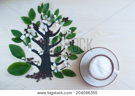 Coffee tree is a symbol laid out with leaves and white flowers, two cups of frothy cappuccino. Theme of coffee, cappuccino, mocha chino, america no. Beautiful elegant background with place for text
