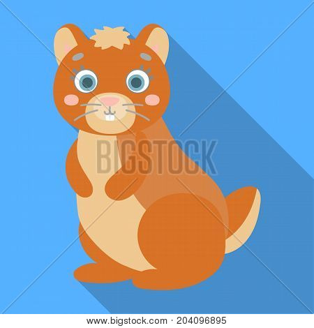 Kangaroo, single icon in flat style.Kangaroo, vector symbol stock illustration .
