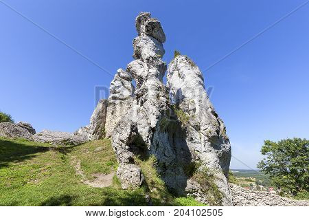 Limestone rock in Polish Jurassic Highland ( Krakow-Czestochowa Upland) Poland. It is geographic macroregion located in southern Poland one of the most attractive tourist regions in the country