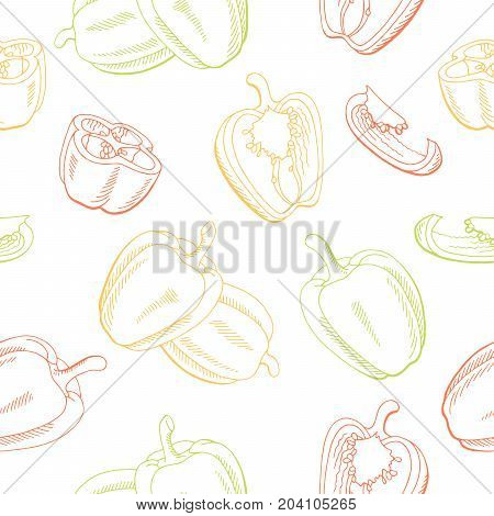 Pepper graphic color seamless pattern sketch illustration vector