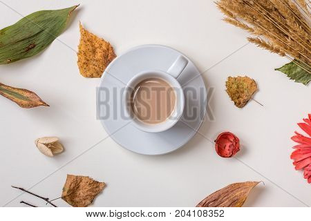Autumn composition: fallen leaves dry petals dried flowers and dry plants simple rustic branches and wheat bunch cup of coffee in center. White background. Top view. Flat lay.