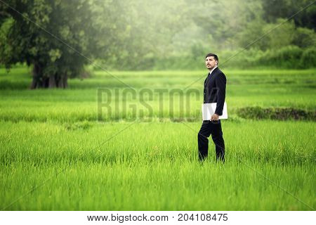 Businessmen stand by looking for a business on a green meadow and use a laptop.