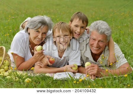 Grandparents and grandchildren together in park reading