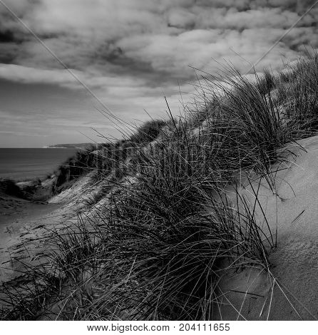 Sand dunes at Camber Sands Sussex UK