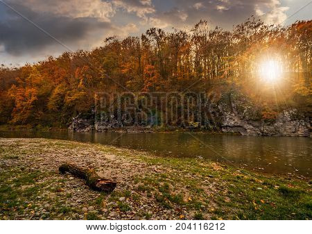 Log On A Rocky Shore Of Forest River At Sunset