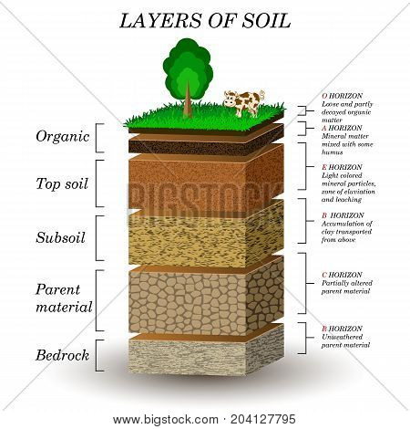 Layers of soil education diagram. Mineral particles sand humus and stones natural fertilizer. Template for banners page posters vector illustration.