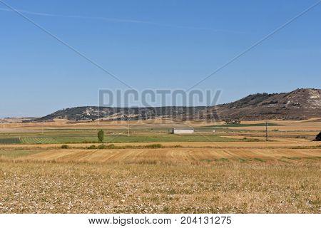 Landscape Of Castilla Y Leon Near The Village Of Villaviudas In The Region Of Tierra De Campos, Pale