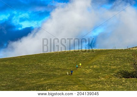 Runners with dog crossing a vast pastureHaute-Savoie France