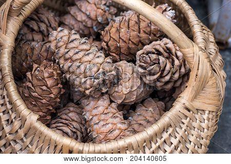 Wicker basket filled with cedar cones close up