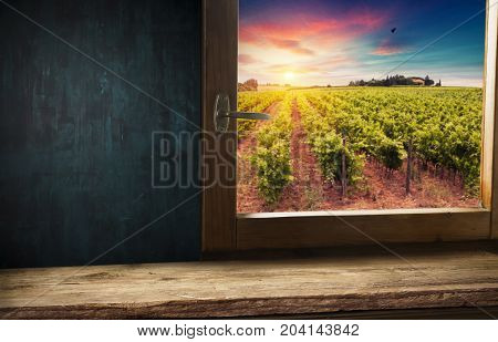 Wine barrel and grapes with vineyard on background.