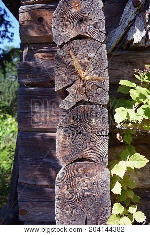 Historical wooden log barn corner in village architecture detail