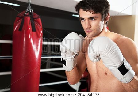 Portrait man hands handsome boxer sport competition