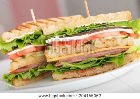 Meat vegetables sandwich fast food fast food menu background close-up