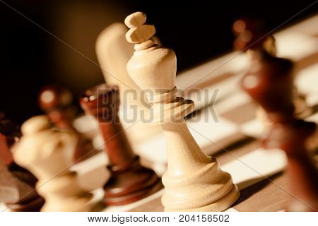 Board pieces chess chessboard game sport white