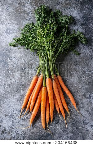 Bundle of fresh organic carrot with haulm over gray texture background. Top view with space