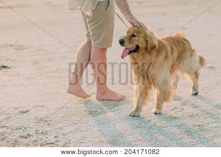 Man with a dog on the seashore