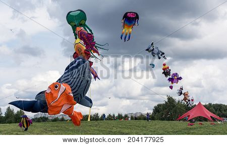 Kites By Two Streams Rise In The Sky