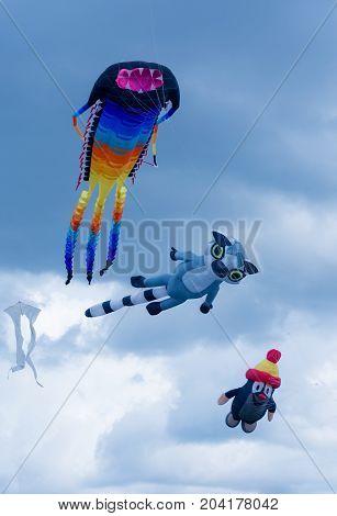 Three Kite Flying In The Sky