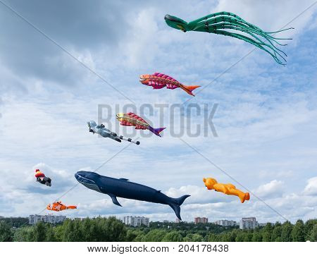 Kites Of Different Shapes
