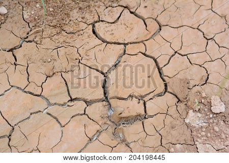 The Cracked Brown Soil Caused From Arid Reason