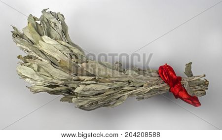 A branch of dried wormwood on a light background. The branch is tied with a red satin ribbon.