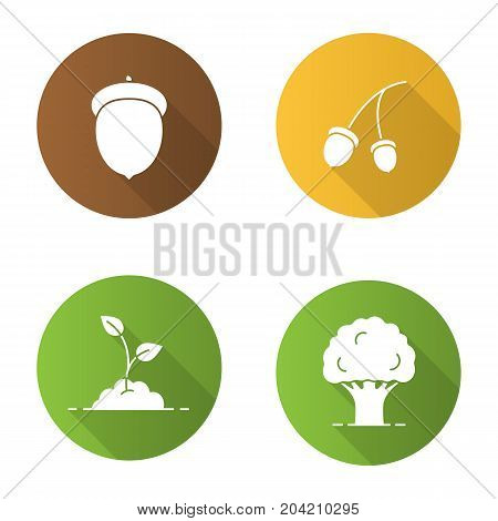 Forestry flat design long shadow glyph icons set. Oak tree and fruit, growing sprout. Vector silhouette illustration