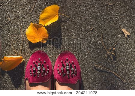 Top view of bordeaux velvet shoes with crystals on pavement with fallen yellow leafs