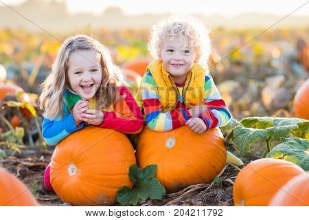 Kids Picking Pumpkins On Halloween Pumpkin Patch