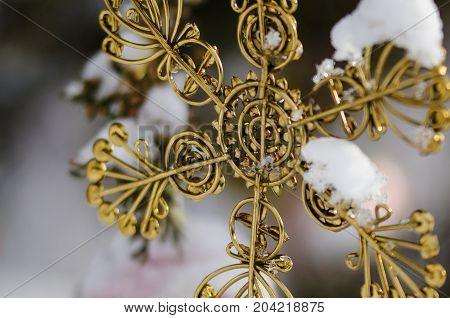 Golden Snow Covered Christmas Star Ornament Decorating an Outdoor Tree
