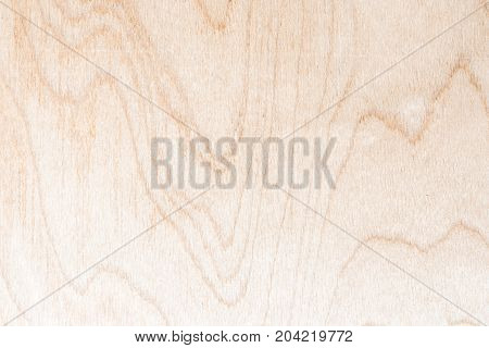 Texture Of Natural Birch Plywood, The Surface Of The Lumber Is Untreated, A Lot Of Fiber And Small C