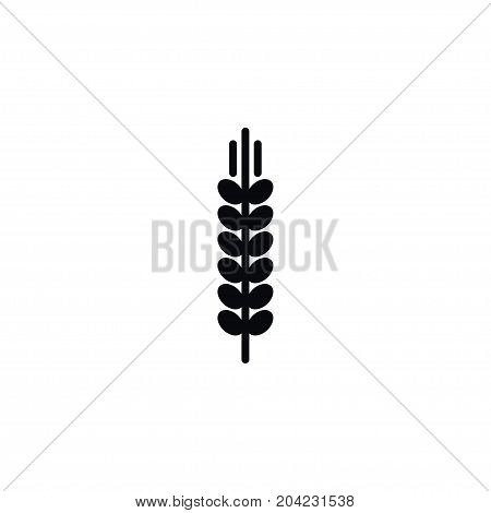 Spike Vector Element Can Be Used For Barley, Spike, Sheaf Design Concept.  Isolated Barley Icon.