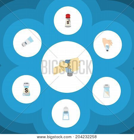 Flat Icon Flavor Set Of Condiment, Sodium, Shaker And Other Vector Objects