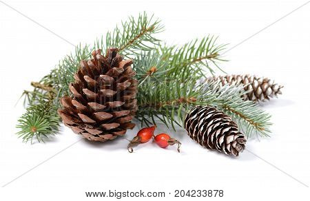 Christmas decoration with fir tree, pine cones and red berries isolated on a white background.