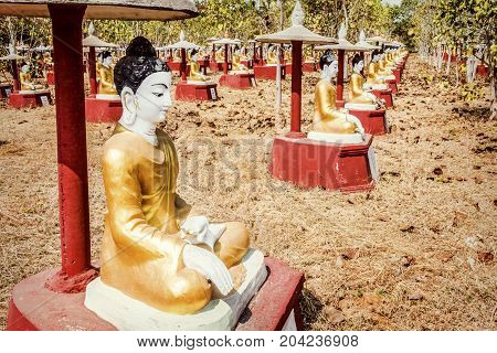 A field filled with lines of Buddha Sculptures in Myanmar.