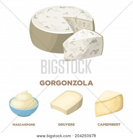 Gruyere, camembert, mascarpone, gorgonzola.Different types of cheese set collection icons in cartoon style vector symbol stock illustration .