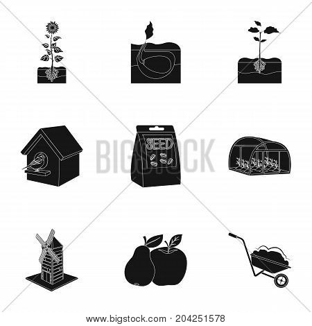 farm, garden, nature and other web icon in black style.