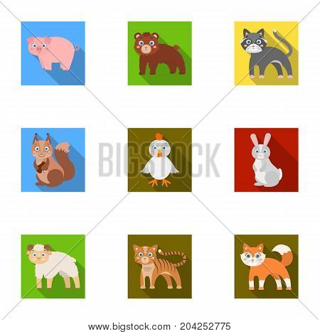 Farm, zoo, ecology and other  icon in flat style.Australia, nature, toys, Australia, nature, toys,