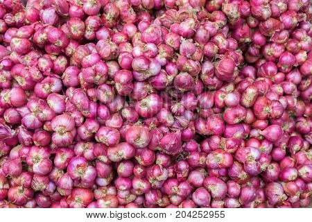 The pile of shallots for sell at the market