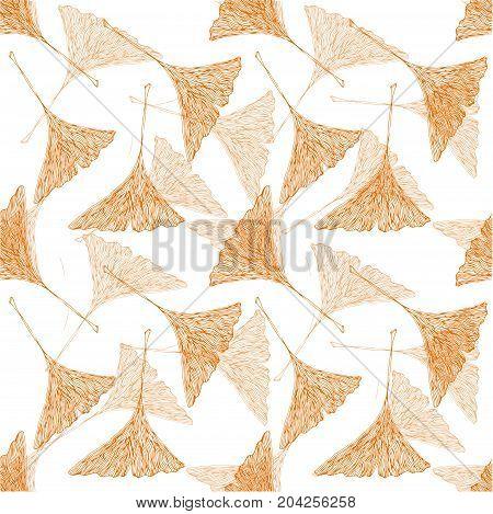 Vector yellow ginko leaves on white field. Autumn botany illustration.